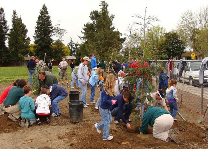 Fun Activities For Children Living In Richmond Education News Articles